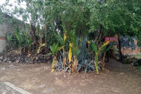 Foto de terreno habitacional en venta en martha dueñas , privada villas del palmar, villa de álvarez, colima, 0 No. 01