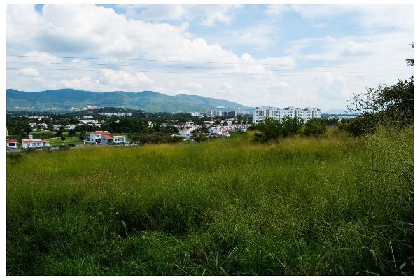 Foto de terreno habitacional en venta en martinicas , campo sotelo, temixco, morelos, 5929887 No. 03