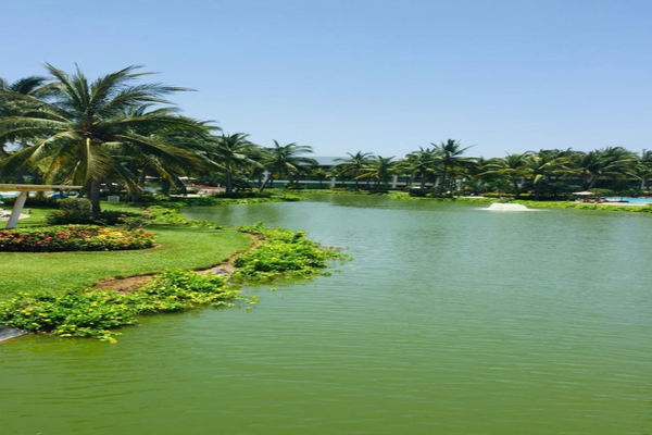 Foto de departamento en venta en mayan lakes , playa diamante, acapulco de juárez, guerrero, 0 No. 14