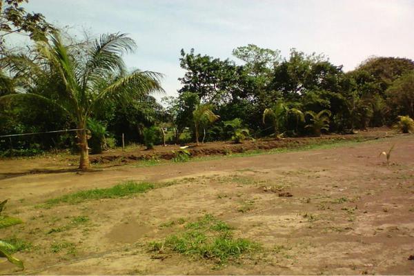 Foto de terreno habitacional en venta en  , medellin de bravo, medellín, veracruz de ignacio de la llave, 8850708 No. 04