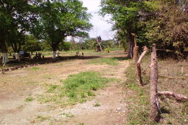 Foto de terreno habitacional en venta en  , medellin de bravo, medellín, veracruz de ignacio de la llave, 8850708 No. 05