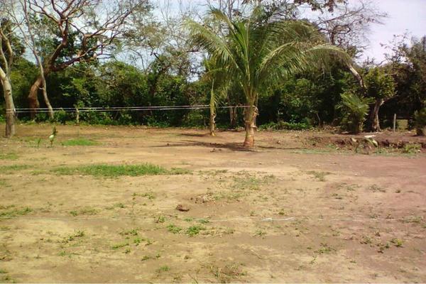 Foto de terreno habitacional en venta en  , medellin de bravo, medellín, veracruz de ignacio de la llave, 8850708 No. 07