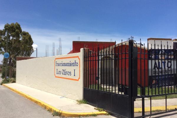 Foto de terreno comercial en venta en mercurio , azoyatla de ocampo (azoyatla), mineral de la reforma, hidalgo, 6153349 No. 06