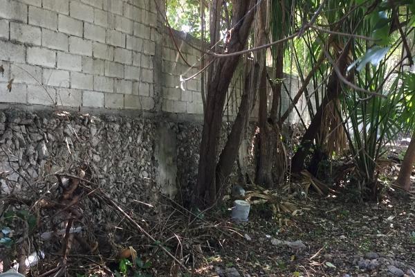 Foto de casa en venta en  , merida centro, mérida, yucatán, 14026106 No. 16