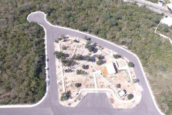 Foto de terreno habitacional en venta en  , merida centro, mérida, yucatán, 14029202 No. 22