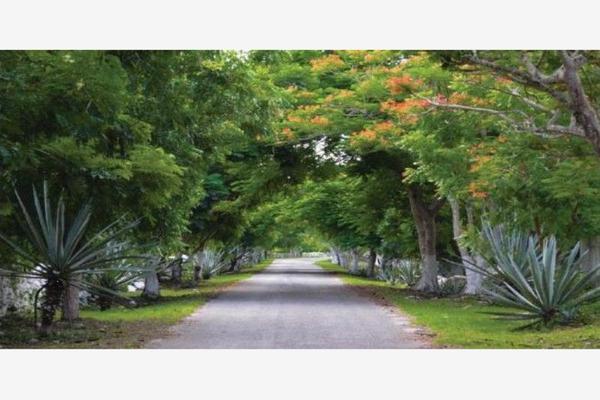 Foto de terreno habitacional en venta en  , merida centro, mérida, yucatán, 5762419 No. 01