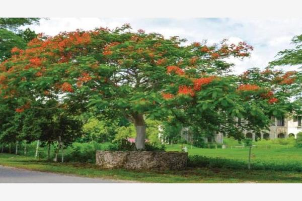 Foto de terreno habitacional en venta en  , merida centro, mérida, yucatán, 5835823 No. 02