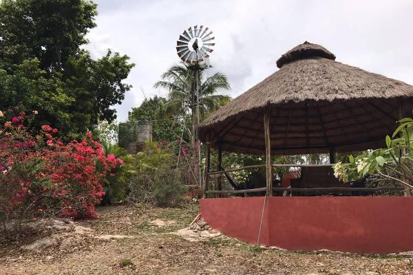Foto de rancho en venta en  , mérida, mérida, yucatán, 14027566 No. 12