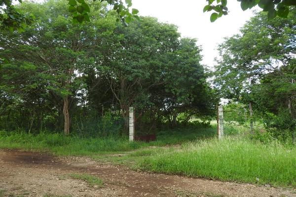 Foto de rancho en venta en  , m?rida, m?rida, yucat?n, 5665696 No. 13