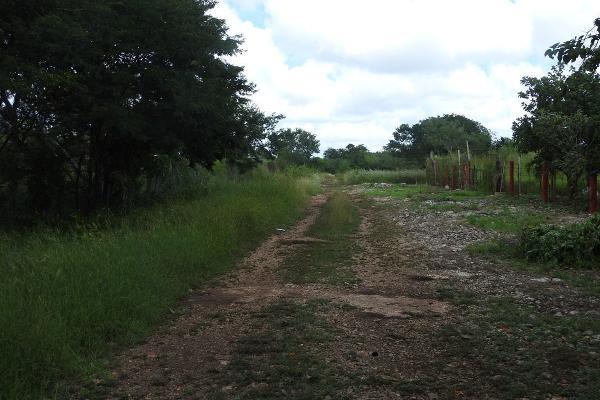 Foto de rancho en venta en  , m?rida, m?rida, yucat?n, 5665696 No. 14