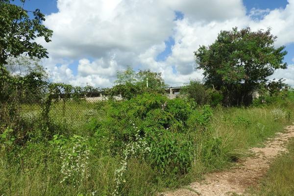 Foto de rancho en venta en  , m?rida, m?rida, yucat?n, 5665696 No. 15
