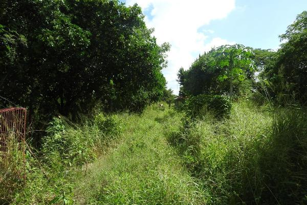 Foto de rancho en venta en  , m?rida, m?rida, yucat?n, 5665696 No. 25