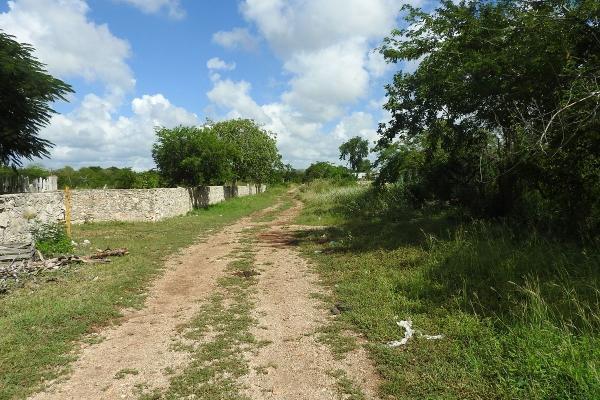 Foto de rancho en venta en  , m?rida, m?rida, yucat?n, 5665696 No. 28