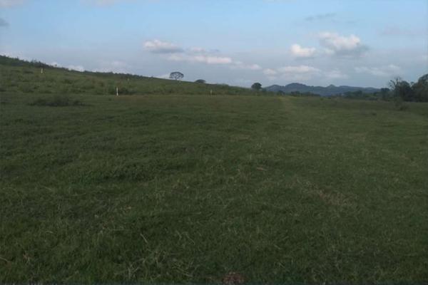 Foto de rancho en venta en  , metlaltoyuca, francisco z. mena, puebla, 15751133 No. 02