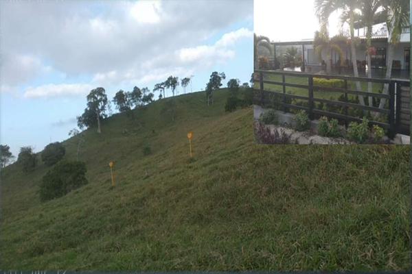 Foto de rancho en venta en  , metlaltoyuca, francisco z. mena, puebla, 15751133 No. 04