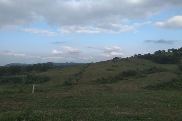 Foto de rancho en venta en  , metlaltoyuca, francisco z. mena, puebla, 15751133 No. 24