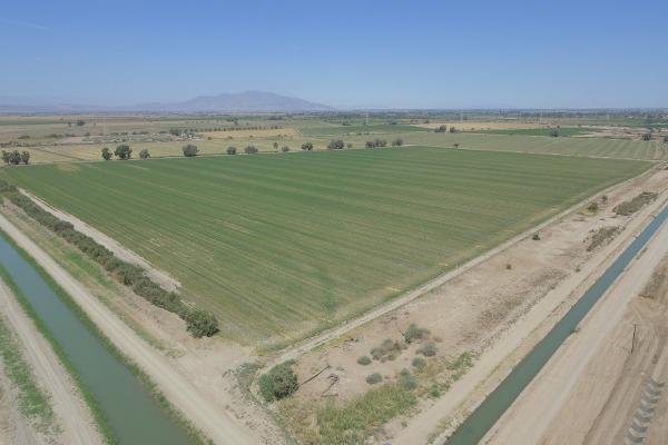 Foto de terreno habitacional en venta en  , mexicali, mexicali, baja california, 12812892 No. 03