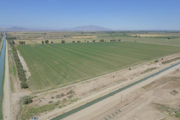 Foto de terreno habitacional en venta en  , mexicali, mexicali, baja california, 12812892 No. 04