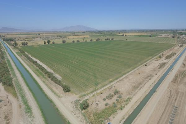 Foto de terreno habitacional en venta en  , mexicali, mexicali, baja california, 12812892 No. 05