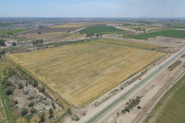 Foto de terreno habitacional en venta en  , mexicali, mexicali, baja california, 12813079 No. 08