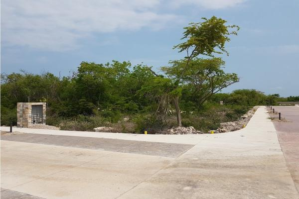 Foto de terreno habitacional en venta en  , méxico norte, mérida, yucatán, 8431909 No. 04