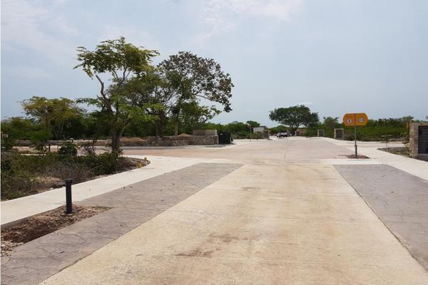 Foto de terreno habitacional en venta en  , méxico norte, mérida, yucatán, 8431909 No. 06