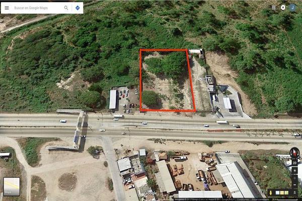 Foto de terreno comercial en renta en  , mezcales, bahía de banderas, nayarit, 8407206 No. 01