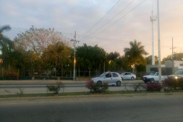 Foto de terreno comercial en renta en  , mezcales, bahía de banderas, nayarit, 8407206 No. 05