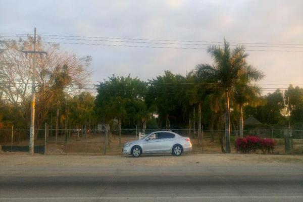 Foto de terreno comercial en renta en  , mezcales, bahía de banderas, nayarit, 8407206 No. 06
