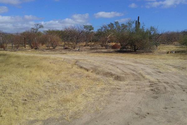 Foto de terreno habitacional en venta en  , mezquitito, la paz, baja california sur, 3428156 No. 02