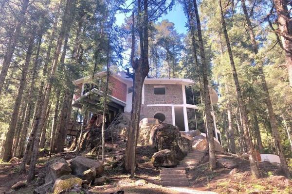 Foto de terreno habitacional en venta en  , mineral del monte centro, mineral del monte, hidalgo, 12273016 No. 07
