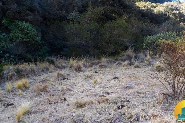 Foto de terreno habitacional en venta en  , mineral del monte centro, mineral del monte, hidalgo, 8063850 No. 06
