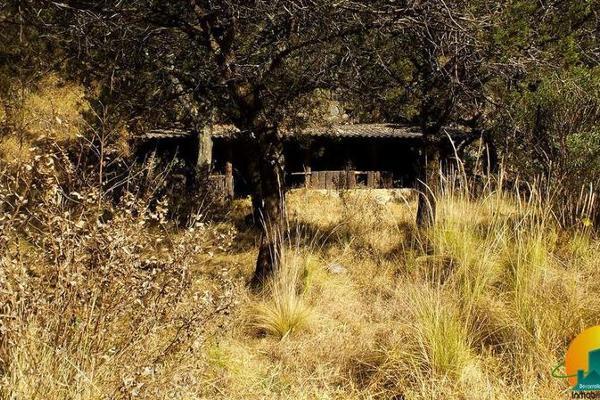 Foto de terreno habitacional en venta en  , mineral del monte centro, mineral del monte, hidalgo, 8063850 No. 07