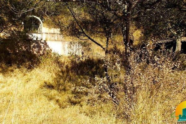 Foto de terreno habitacional en venta en  , mineral del monte centro, mineral del monte, hidalgo, 8063850 No. 08