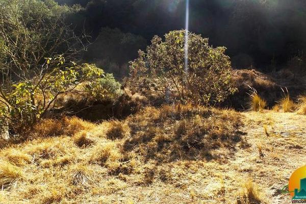 Foto de terreno habitacional en venta en  , mineral del monte centro, mineral del monte, hidalgo, 8063850 No. 10