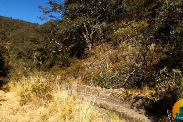 Foto de terreno habitacional en venta en  , mineral del monte centro, mineral del monte, hidalgo, 8063850 No. 11