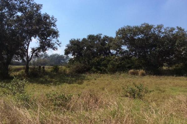 Foto de terreno habitacional en renta en  , miramapolis, ciudad madero, tamaulipas, 11700808 No. 02