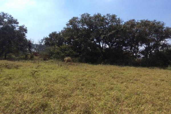 Foto de terreno habitacional en renta en  , miramapolis, ciudad madero, tamaulipas, 11700808 No. 03