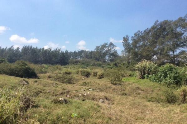 Foto de terreno habitacional en renta en  , miramapolis, ciudad madero, tamaulipas, 11700808 No. 04
