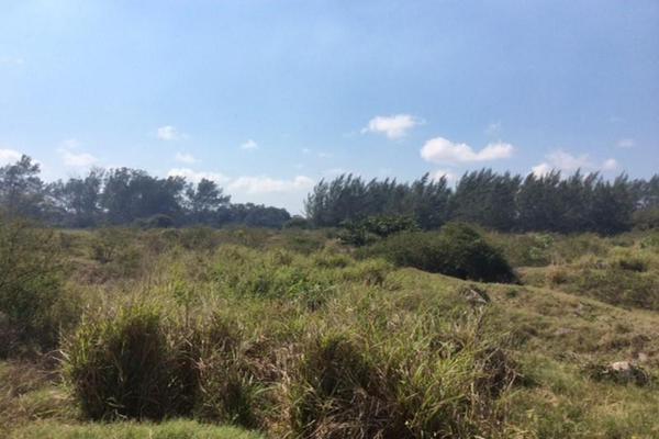 Foto de terreno habitacional en renta en  , miramapolis, ciudad madero, tamaulipas, 11700808 No. 05