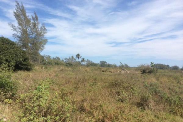 Foto de terreno habitacional en renta en  , miramapolis, ciudad madero, tamaulipas, 11700808 No. 06