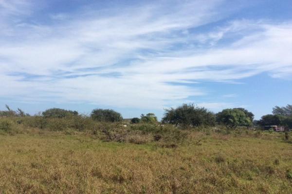 Foto de terreno habitacional en renta en  , miramapolis, ciudad madero, tamaulipas, 11700808 No. 07