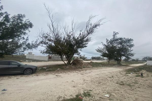 Foto de terreno habitacional en venta en  , miramapolis, ciudad madero, tamaulipas, 0 No. 05