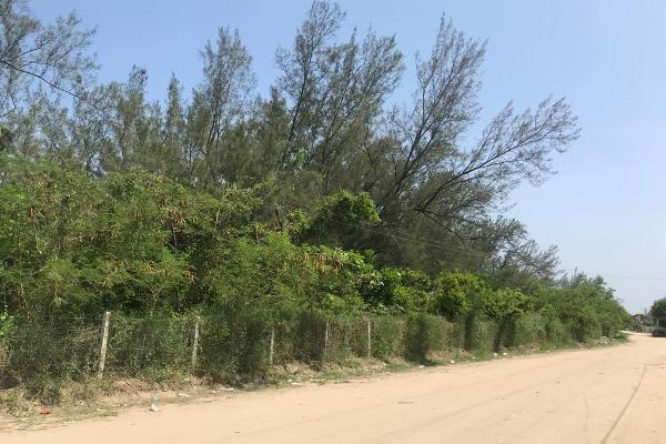 Foto de terreno habitacional en venta en  , miramar, ciudad madero, tamaulipas, 13352953 No. 03