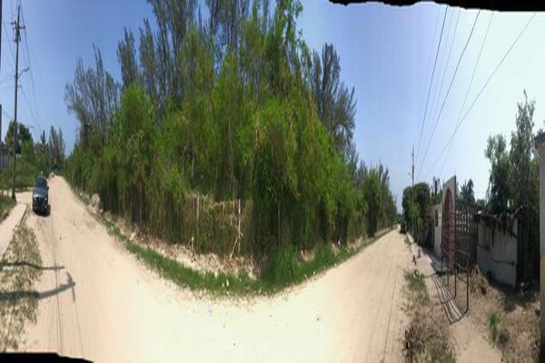 Foto de terreno habitacional en venta en  , miramar, ciudad madero, tamaulipas, 13352953 No. 05