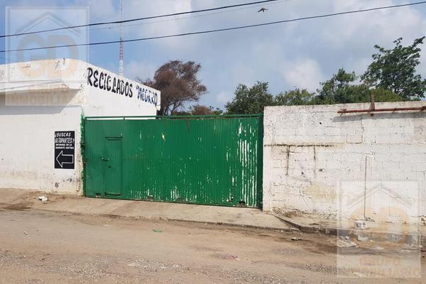 Foto de terreno habitacional en renta en  , miramar, ciudad madero, tamaulipas, 9204662 No. 02