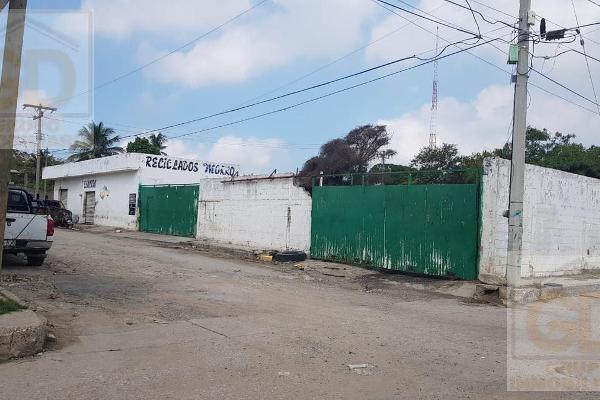 Foto de terreno habitacional en renta en  , miramar, ciudad madero, tamaulipas, 9204662 No. 09
