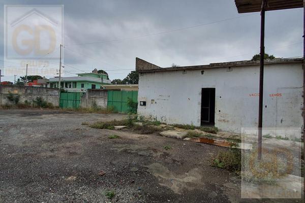 Foto de terreno habitacional en renta en  , miramar, ciudad madero, tamaulipas, 9204662 No. 14