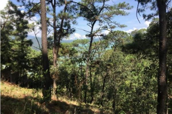 Foto de terreno habitacional en venta en monte alto 0, monte alto, valle de bravo, méxico, 5413444 No. 01