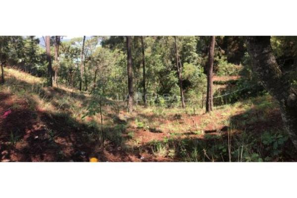 Foto de terreno habitacional en venta en monte alto 0, monte alto, valle de bravo, méxico, 5413444 No. 07